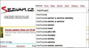 Češi o marihuanu zajímají velmi